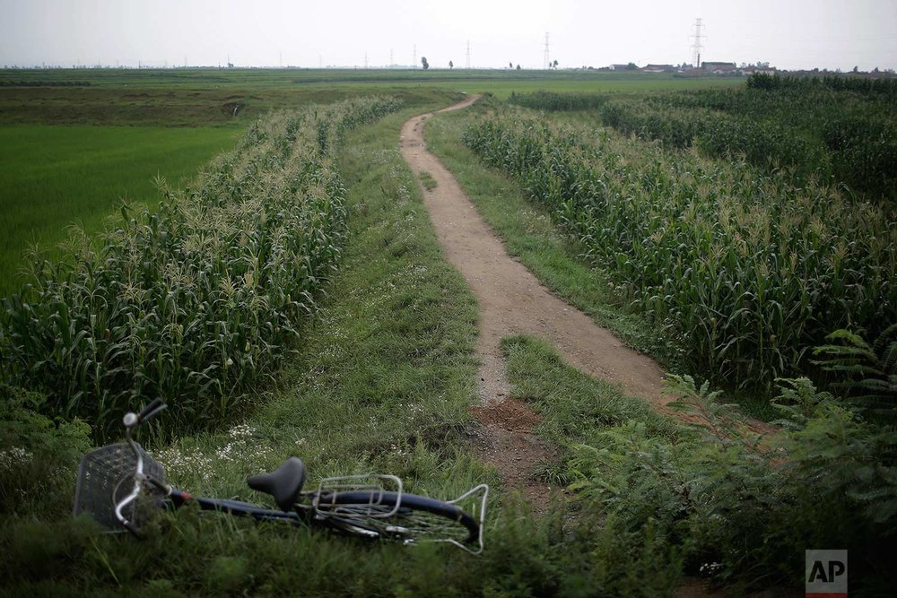 In this Friday, July 21, 2017, photo, a bicycle lies near a pathway in Hamju county, North Korea, leading to where an unexploded bomb was found near the railway which runs through Hamhung from Pyongyang to the northeastern port of Chongjin. (AP Photo/Wong Maye-E)