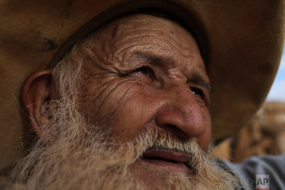 "In this July 20, 2017 photo, cowboy Joaquim Silveira, prepares his oxen for the ascent of Serra da Boa Vista, during the Ox Cart Festival in Vazante, Minas Gerais state, Brazil. The 74-year-old Silveira has been participating int he festival since he was 12. ""The festival is our tradition, it's the moment we remember our past and the importance of the the ox in our culture,"" he said. (AP Photo/Eraldo Peres)"