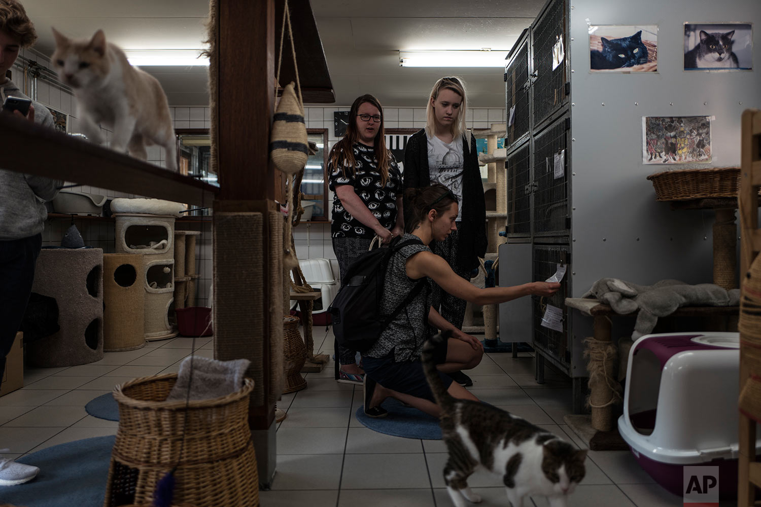 In this Thursday, Aug. 3, 2017 photo, tourists from Finland visit the Catboat shelter in Amsterdam, Netherlands. (AP Photo/Muhammed Muheisen)