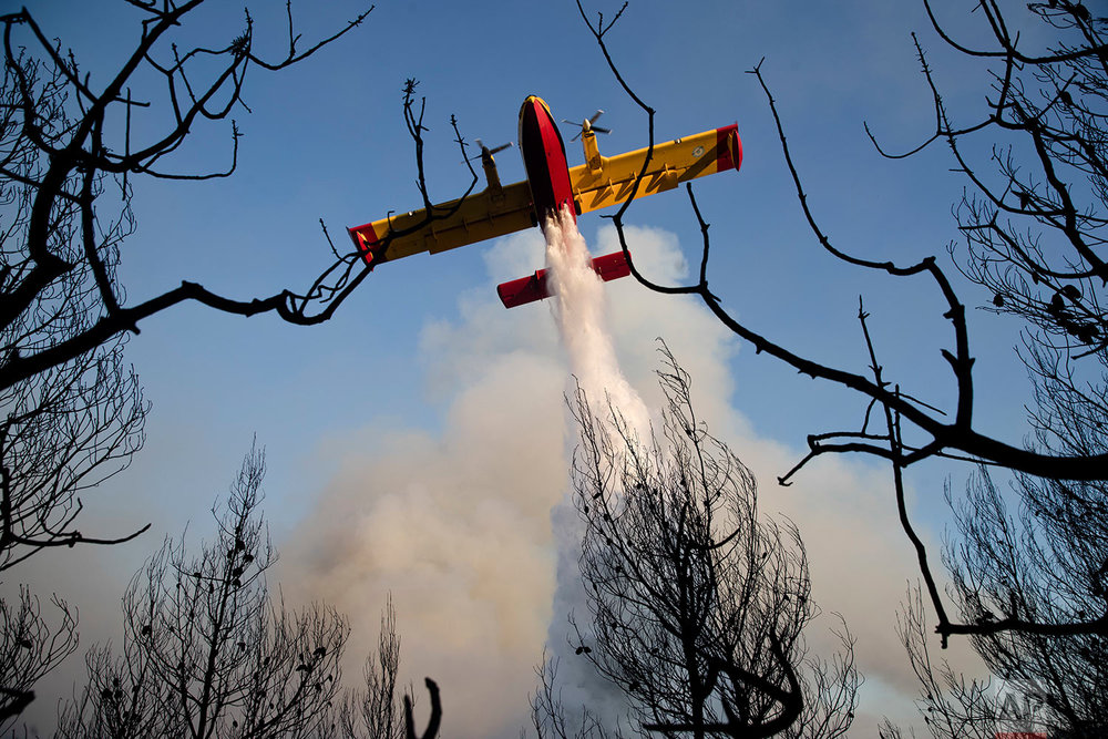 Greece Forest Fire