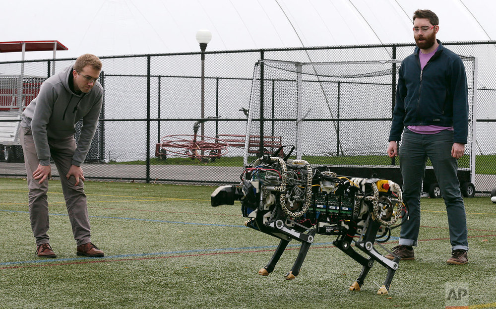 In this Oct. 24, 2014 photo, researchers Randall Briggs, left, and Will Bosworth monitor a robotic cheetah during a test run on an athletic field at the Massachusetts Institute of Technology in Cambridge, Mass. MIT scientists said the robot, modeled after the fastest land animal, may have real-world applications, including development for prosthetic legs. (AP Photo/Charles Krupa)