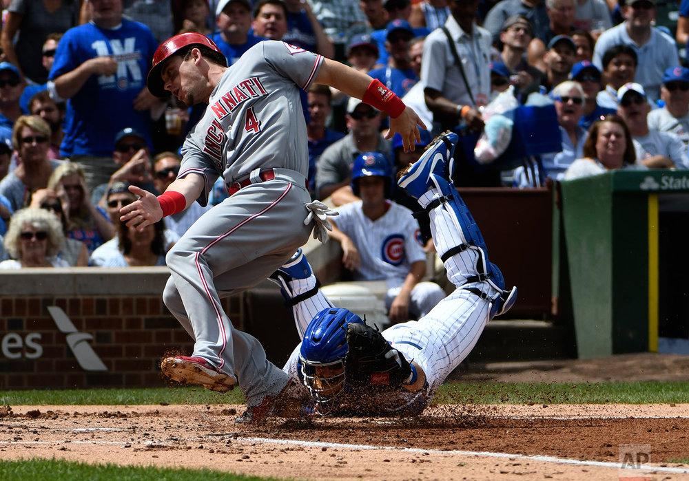 Reds Cubs Baseball