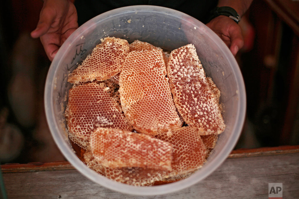 A Yemeni vendor displays honeycomb for sale in a shop in Sanaa, Yemen on Aug. 22, 2017. Yemen's ruinous civil war has claimed an unlikely victim: The country's prized honey industry. Thick, rich and as dense as liquid gold, Yemen's honey has traditionally been much sought after in the oil-rich Gulf region, where people highly regard it, both as a healthy food item and as a natural way to strengthen their immune system. (AP Photo/Hani Mohammed)