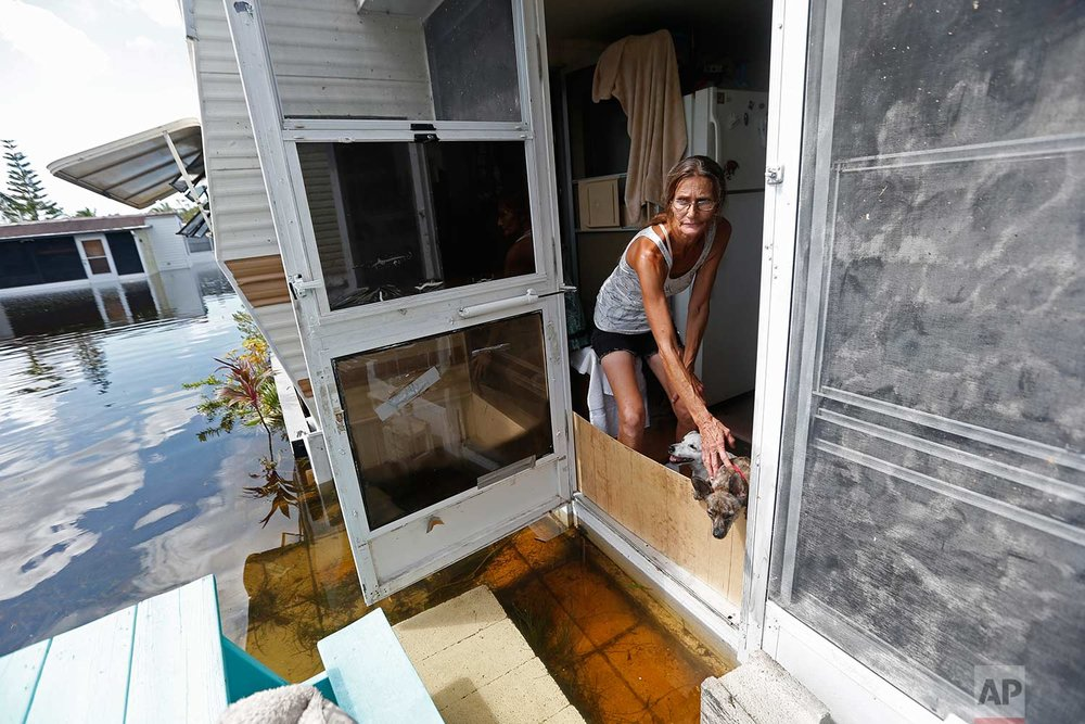 In this Sept. 12, 2017 photo, Cherie Ethier stands in a doorway of her mobile home with her dogs and cats, surrounded by floodwater, in the Marco Naples RV Resort, in the aftermath of Hurricane Irma, in Naples, Fla. Ethier and her husband stayed in a hotel during the storm, but returned to their trailer as soon as they could. (AP Photo/Gerald Herbert)
