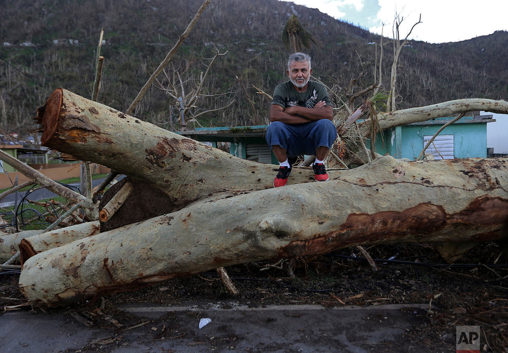 "In this  Sept. 29, 2017 photo, Martin Ruiz poses for a portrait on a fallen tree in his neighborhood in the aftermath of Hurricane Maria in Yabucoa, Puerto Rico. ""After the hurricane, what I want is help for the people who are in the most devastated areas. In my case, there were no problems. In my home there was very little damage. But there are other relatives, who lost their home, their clothes, and they are need.  For the moment I am fine.""  (AP Photo/Gerald Herbert)"