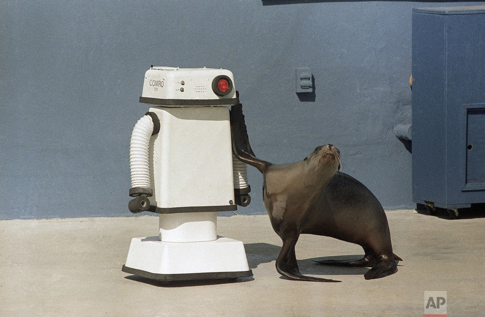 Robot & Seal | Oct. 16, 1984