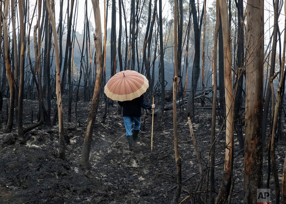 Spain Portugal Wildfires