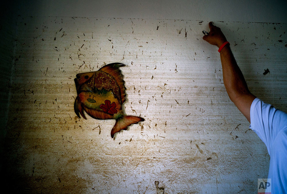 In this Thursday, Oct. 12, 2017 photo, Eduardo Pagan Figueroa points to the wall of his home where floodwaters reached, brought by Hurricane Maria in Toa Baja, Puerto Rico. (AP Photo/Ramon Espinosa)