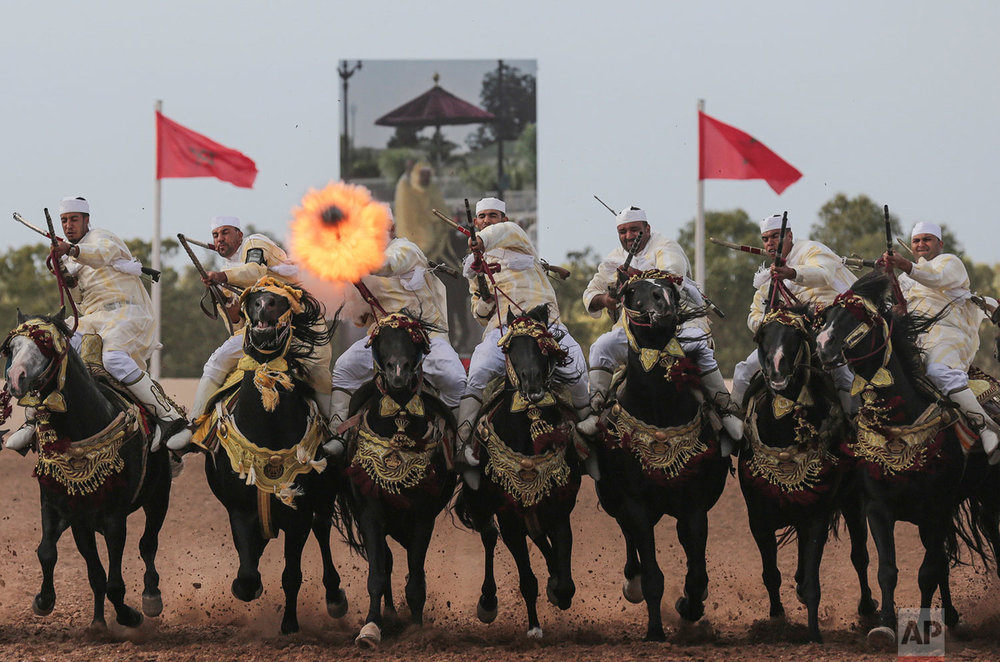 Morocco Horsemanship Competition