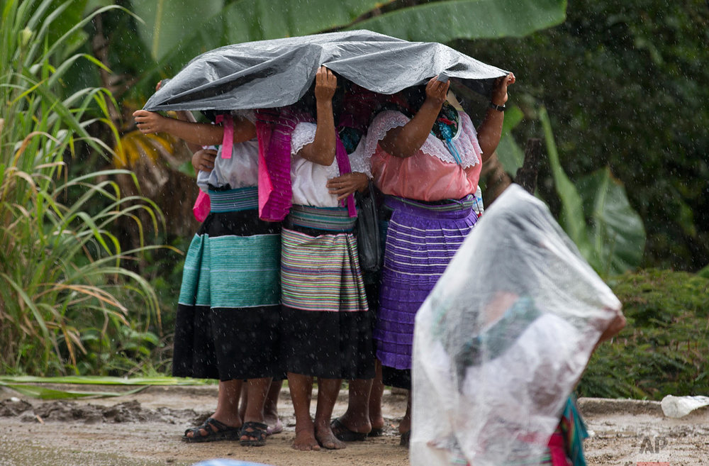 In this Sunday, Oct. 15, 2017 photo, indigenous women cover themselves in the rain as they wait for the arrival of Maria de Jesus Patricio, presidential candidate for the National Indigenous Congress, to hold a campaign rally in the Zapatista stronghold of Morelia in the southern state of Chiapas, Mexico. If Patricio gets enough signatures to get her name on the ballot, she would be the first candidate formally running on behalf of indigenous people. (AP Photo/Eduardo Verdugo)