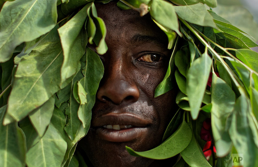 A protester demanding President Robert Mugabe stands down wears leaves on his head as he marches towards State House in Harare, Zimbabwe Saturday, Nov. 18, 2017. In a euphoric gathering that just days ago would have drawn a police crackdown, crowds marched through Zimbabwe's capital on Saturday to demand the departure of President Robert Mugabe, one of Africa's last remaining liberation leaders, after nearly four decades in power. (AP Photo/Ben Curtis)