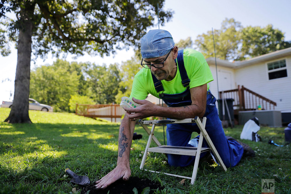 Jeff McCoy plants sunflower seeds in the yard of his home in Dickson, Tenn. (AP Photo/David Goldman)
