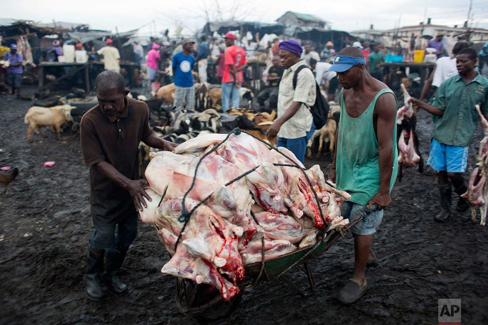 In this Nov. 8, 2017 photo, slaughterhouse workers push a wheelbarrow filled with a load of goat carcasses, ready for sale, through the La Saline slaughterhouse yard sodden with animal waste and mud, in Port-au-Prince, Haiti. Customers, neighbors and even the market's workers say Haitian authorities have long failed to take any action to improve conditions at the market. (AP Photo/Dieu Nalio Chery)