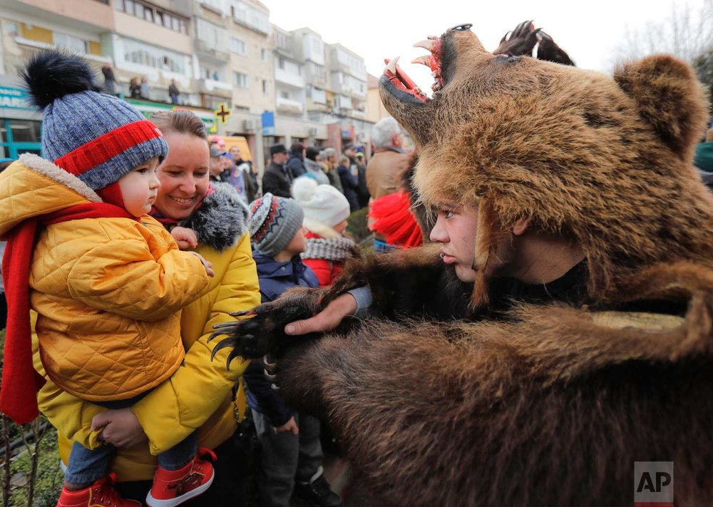In this Saturday, Dec. 30, 2017, picture a man wearing a bear fur costume approaches a young spectator during an annual bear parade in Comanesti, Romania. (AP Photo/Vadim Ghirda)