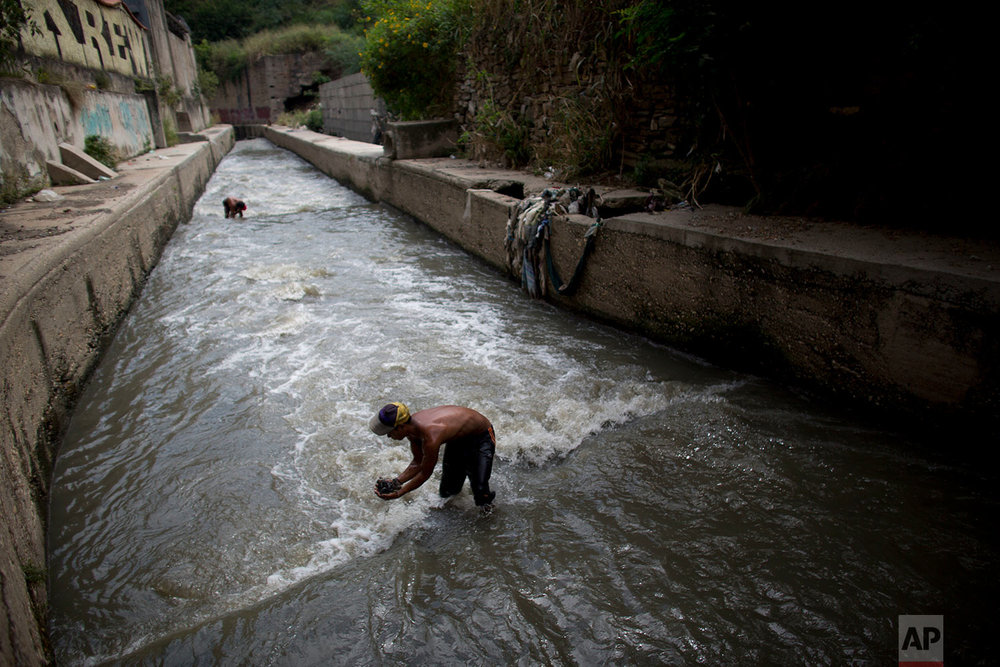 In this Nov. 30, 2017 photo, Douglas scoops up mud from the bottom of the polluted Guaire River, in search of gold and anything valuable he can sell, in Caracas, Venezuela. Some stretches of the river smell of sewer while others emit a toxic odor of fuel, a stench that stays in ones nose for hours after leaving the water. (AP Photo/Ariana Cubillos)