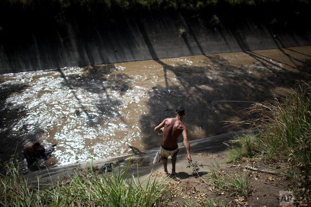 In this Dec. 5, 2017 photo, a man holds on to a branch to lower himself down the concrete bank to the polluted Guaire River where he will search for anything valuable he can sell, in Caracas, Venezuela. Most of the scavengers stream down from hillside barrios, and from afar, they seem to play in the river, but in reality their desperation to earn a living is what pushes them to risk entering the toxic, sewage water. (AP Photo/Ariana Cubillos)