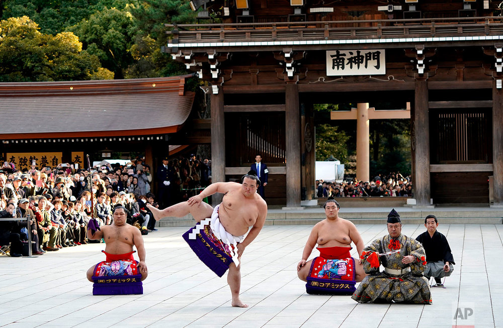 Japan Sumo New Year