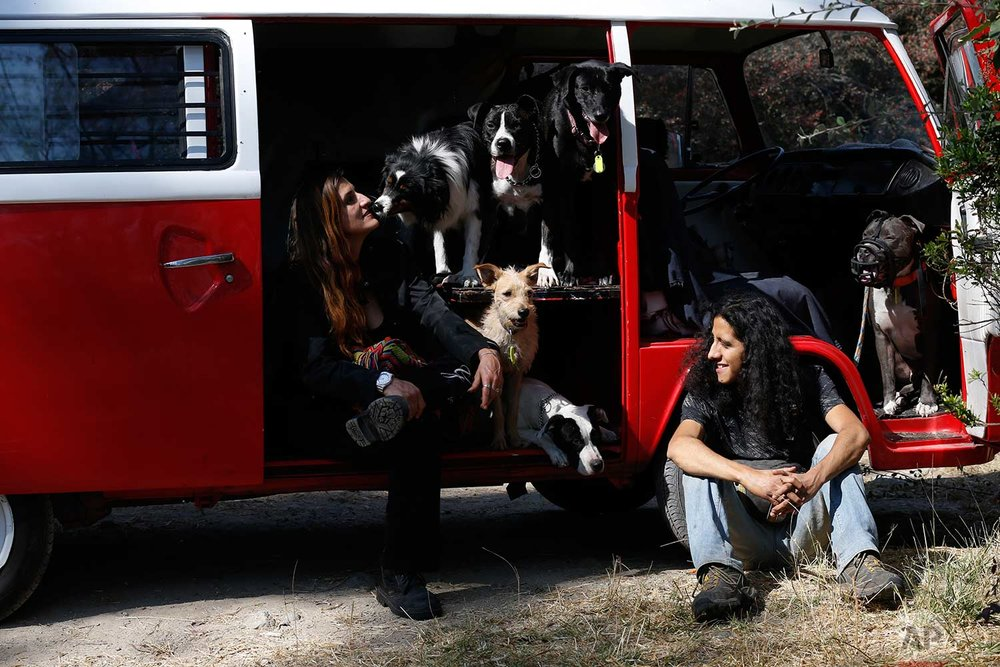 In this Wednesday, Dec. 24, 2017 photo, Mariam Gutierrez de Velasco and Jair Benavides sit with their dogs during a trip to Chapultepec forest in Mexico City. The couple and their dozens of dogs are living in a crowded garage that a neighbor lent them. (AP Photo/Marco Ugarte)