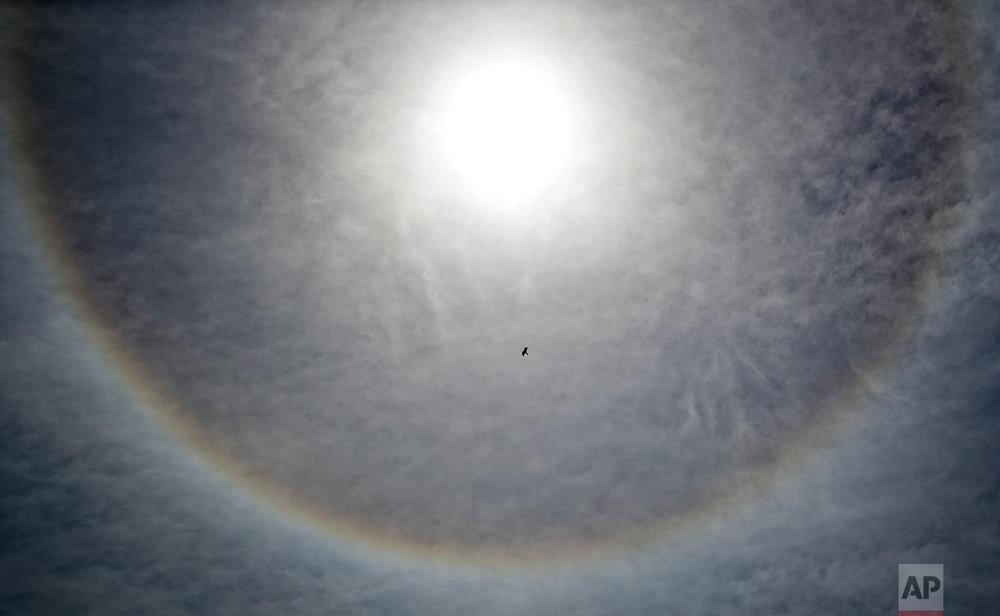 Kenya Sun Halo
