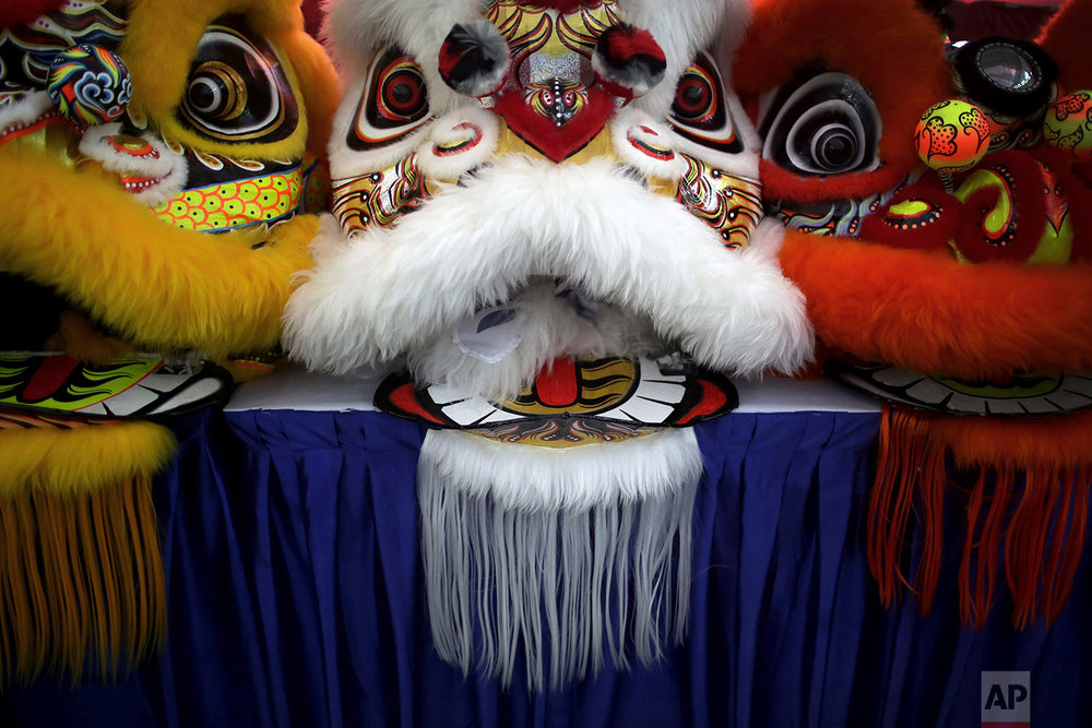 In this Friday, Feb. 2, 2018, photo, the lion heads of costumes are lined up on stage during the 11th International Lion Dance Competition in Singapore. (AP Photo/Wong Maye-E)