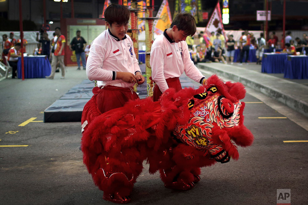 In this Friday, Feb. 2, 2018, photo, members of a lion dance troop from Indonesia undress after falling during their routine while competing in the 11th International Lion Dance Competition in Singapore. (AP Photo/Wong Maye-E)