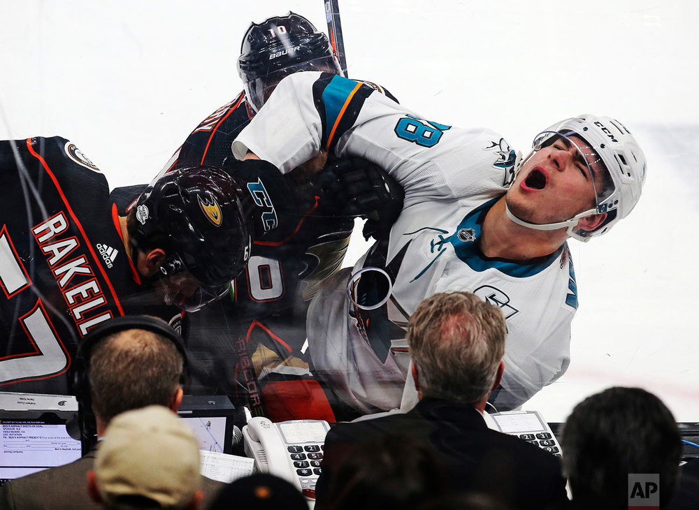 San Jose Sharks right winger Timo Meier, right, and Anaheim Ducks center Rickard Rakell, left, battle against the boards in the first period of an NHL hockey game in Anaheim, Calif., Sunday, Feb. 11, 2018. (AP Photo/Reed Saxon)