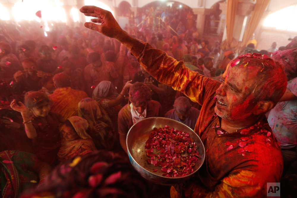 An Indian man, right, throws flowers on devotees during Holi festival celebration at the Lord Jagannath temple in Ahmadabad, India, Friday, March 2, 2018. (AP Photo/Ajit Solanki)