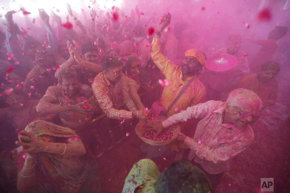 An Indian man, wearing yellow, throws flowers on devotees as others throw colored powder during Holi festival celebration at Lord Jagannath Hindu temple in Ahmadabad, India, Friday, March 2, 2018. (AP Photo/Ajit Solanki)