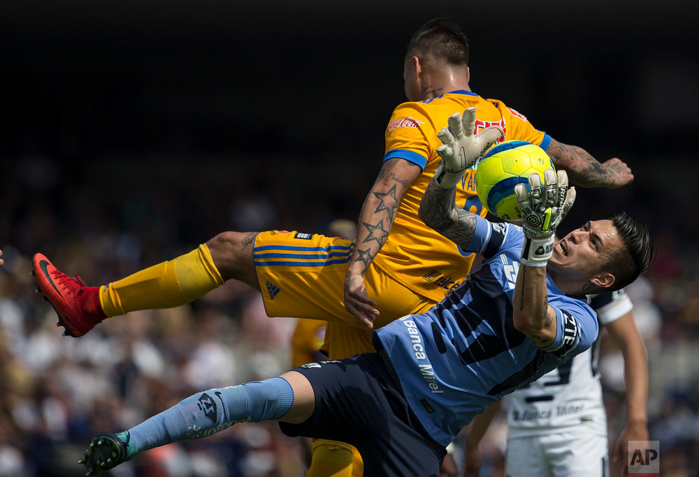 In this Feb. 4, 2018 photo, Pumas goalkeeper Alfredo Saldivar reaches for the ball under pressure from Tigres' Eduardo Vargas, during a Mexican soccer league in Mexico City. (AP Photo/Christian Palma)