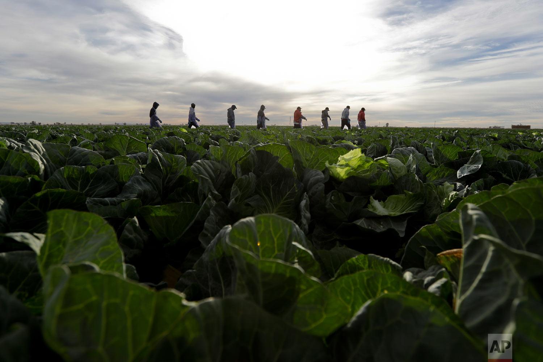 Despite Heated Rhetoric Little Change On Us Mexico Border Ap