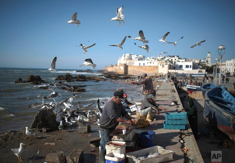 Morocco Daily Life