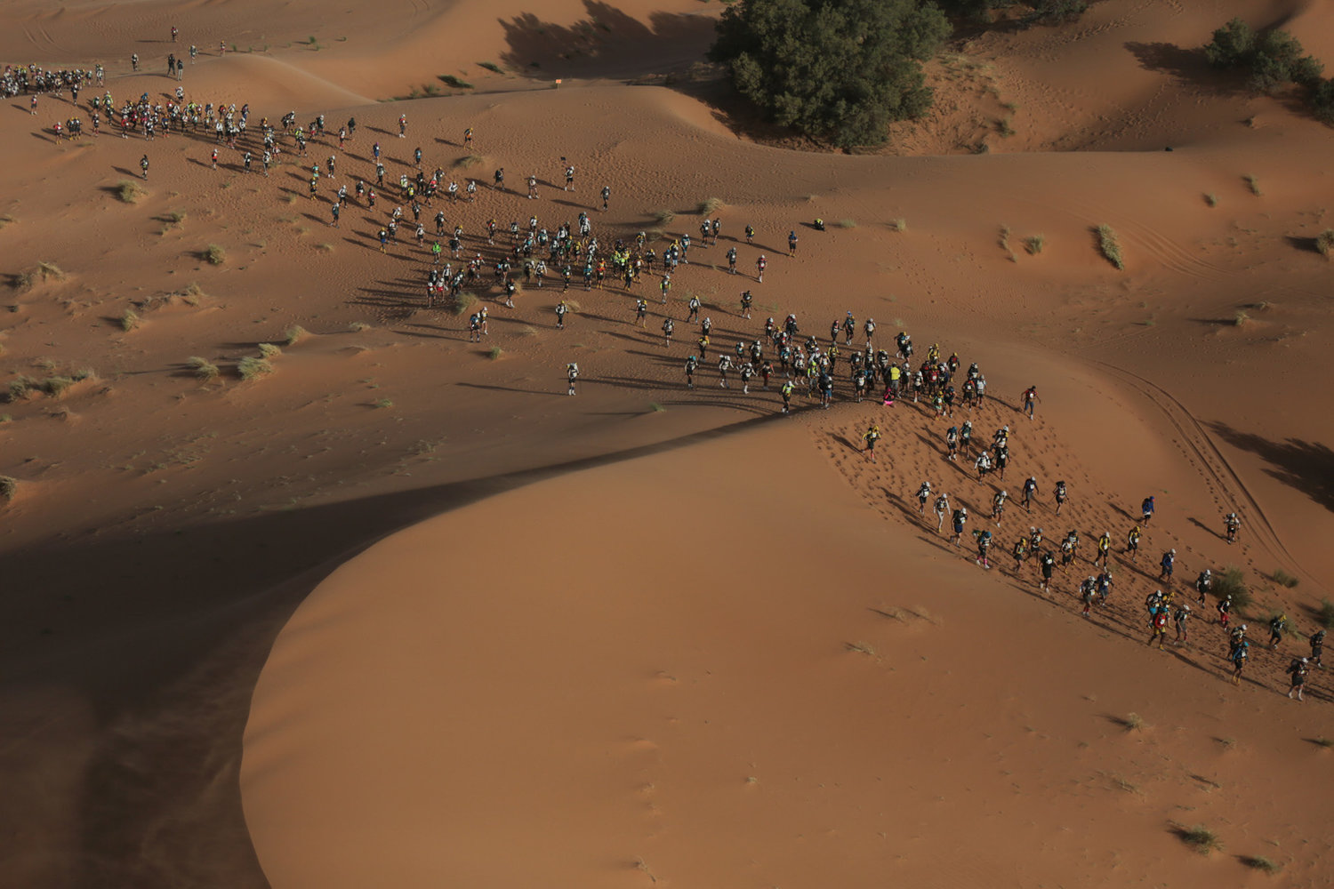 Grueling Marathon des Sables completes another edition