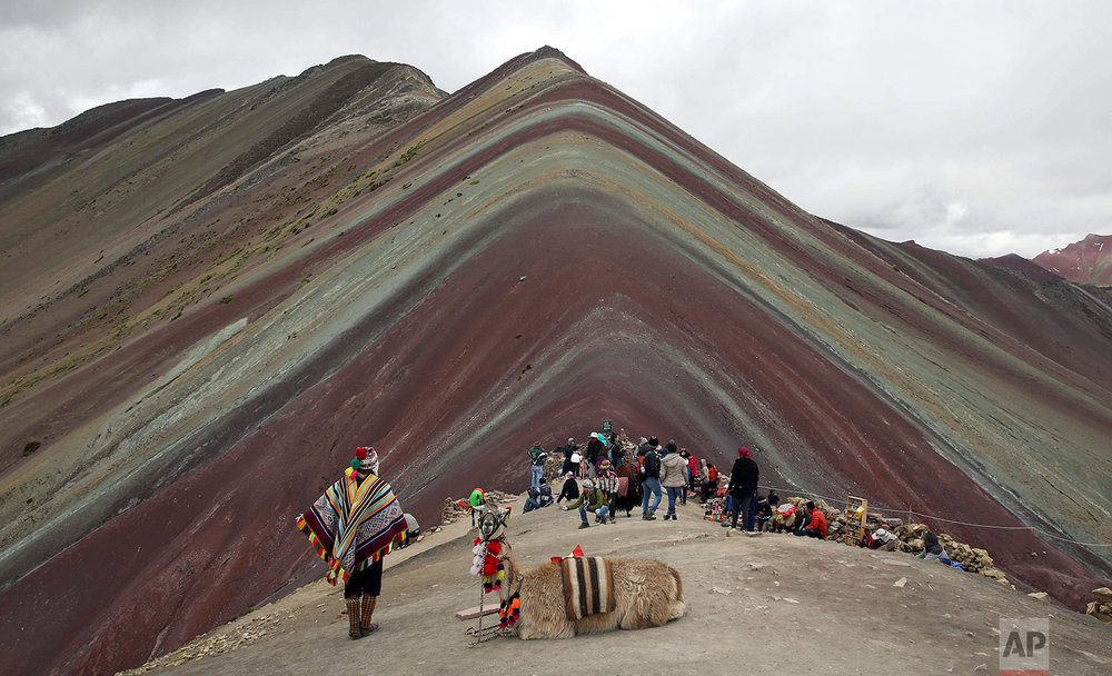 In this March 2, 2018 photo, an Andean guide rests with his llama as tourists take in the natural wonder of Rainbow Mountain, in Pitumarca, Peru. (AP Photo/Martin Mejia)