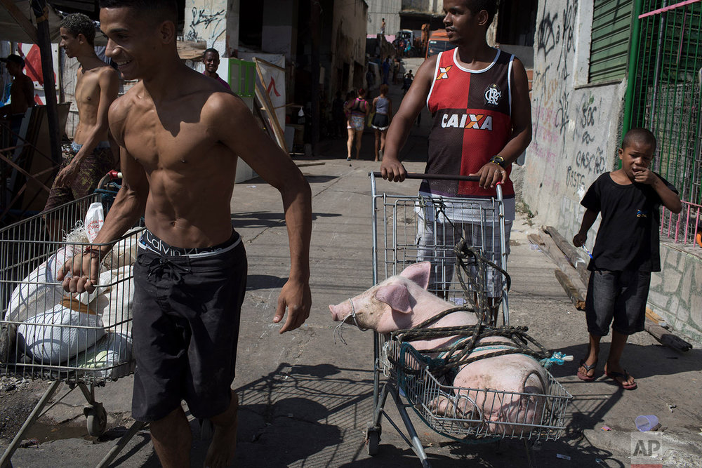 A man carries a pig in a cart during an eviction of the building that used to house the Brazilian Institute of Geography and Statistics, in the Mangueira slum of Rio de Janeiro, Brazil, Friday, April 27, 2018. For many who live in Rio's slums, an already hardscrabble existence feels increasingly precarious as Brazil sees millions return to poverty amid recession, corruption and cuts to social welfare programs. (AP Photo/Leo Correa)