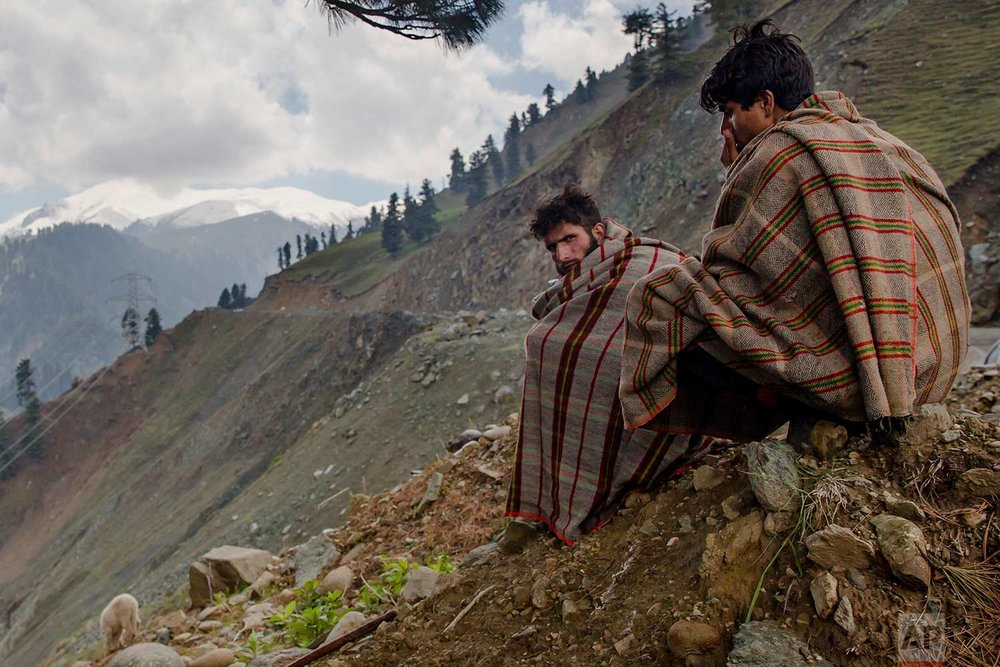 In this May 9, 2018, photo, Kashmiri nomadic Bakarwal men keep an eye on the heard of sheep and goats as they take shelter under a tree as it drizzles near Dubgan, 70 kilometers (43 miles) south of Srinagar, Indian controlled Kashmir. (AP Photo/Dar Yasin)