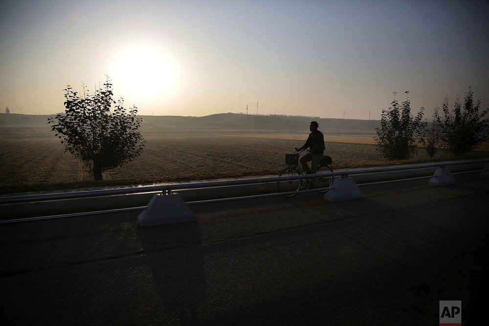 A man cycles past rice fields in Pyongyang, North Korea, in the early morning on Oct. 13, 2015. (AP Photo/Wong Maye-E)