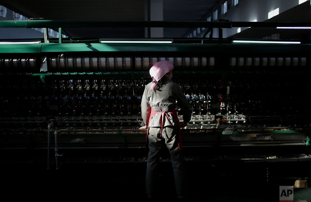A shaft of light from the morning sun illuminates a woman as she sorts out silkworm cocoons to be boiled at the Kim Jong Suk Silk Mill in Pyongyang, North Korea, on Jan. 6, 2017. The silk mill, named after North Korean leader Kim Jong Un's grandmother, is where 1,600 workers _ mostly women _ sort and process silkworms to produce silk thread that officials at the factory say is made into roughly 200 tons of silk a year. (AP Photo/Wong Maye-E)