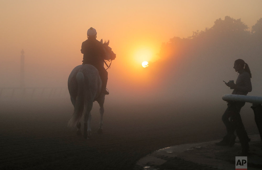 An exercise rider guides a thoroughbred onto the track for a workout in the fog at Belmont Park, Tuesday, June 5, 2018, in Elmont, N.Y. Justify will attempt to become the 13th Triple Crown winner when he runs in the 150th running of the Belmont Stakes horse race on Saturday.(AP Photo/Julie Jacobson)