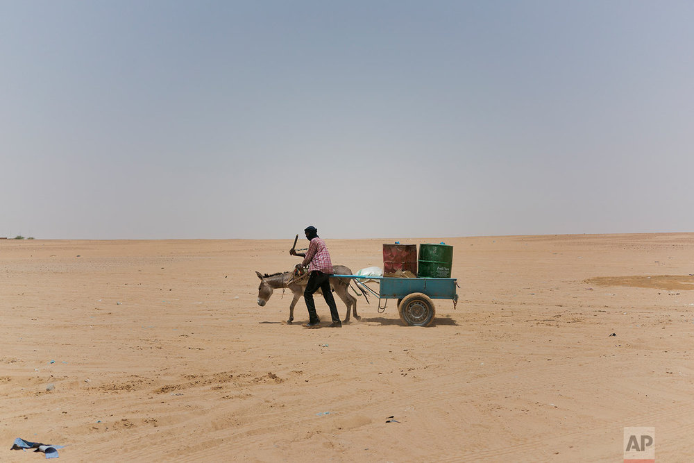 A man and his donkey transport water barrels toward the Algerian border in Niger's Tenere desert region of the south central Sahara on June 3, 2018. (AP Photo/Jerome Delay)
