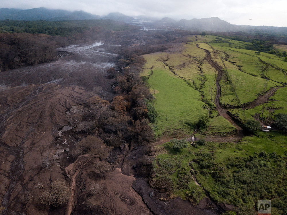In this June 13, 2018 photo, green grass grows next to the area scorched by the eruption of the Volcano of Fire in San Miguel Los Lotes, Guatemala. (AP Photo/Rodrigo Abd)