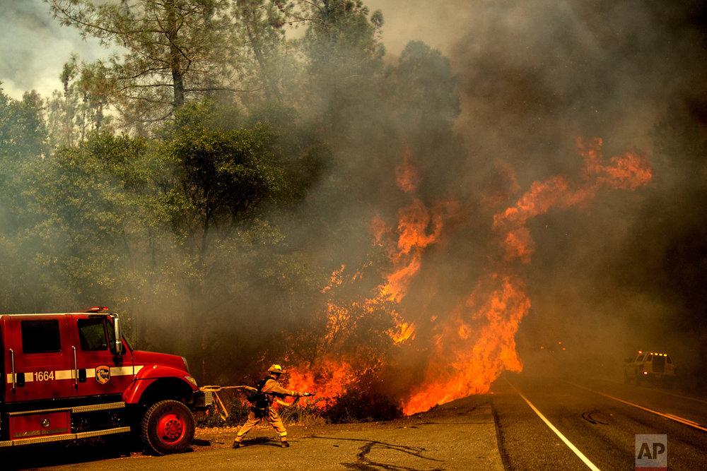 A firefighter battles the Carr Fire as it burns near Shasta, Calif., on Thursday, July 26, 2018. (AP Photo/Noah Berger)