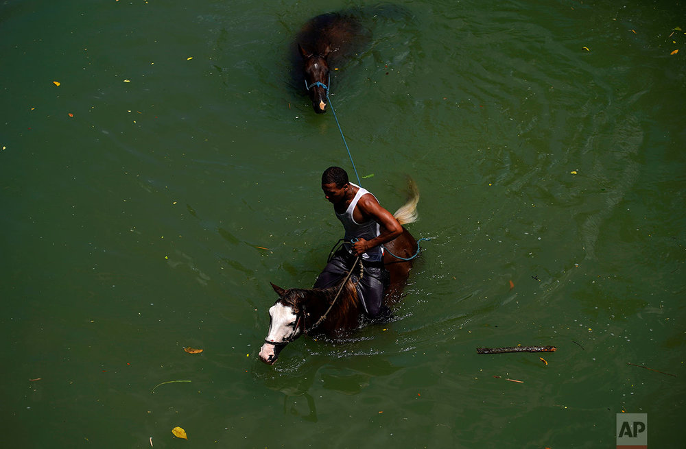 A man rinses his horses off in Bano River after washing them in Guantanamo, Cuba, July 25, 2018. Locals use the river for swimming, cooling off their work horses, and washing cars.