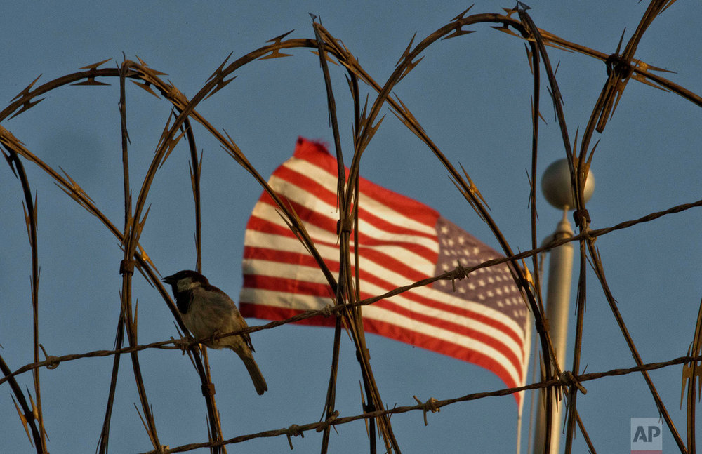 A bird perches on barbed wire outside the Camp VI detention facility at the naval base at Guantanamo Bay, June 5, 2018.