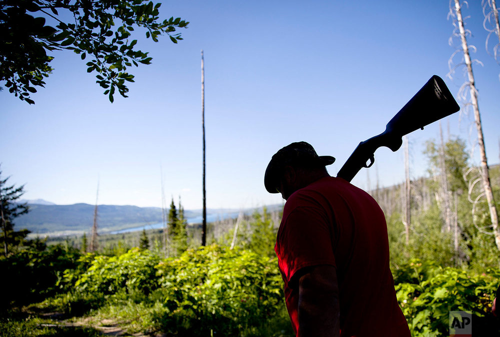 George A. Hall carries his shotgun as protection against bears while searching for Ashley HeavyRunner Loring in the mountains of the Blackfeet Indian Reservation in Babb, Mont., July 12, 2018. (AP Photo/David Goldman)