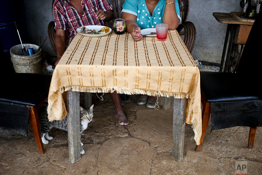 Larissa and her husband eat a lunch of fish on his break from a construction job in the department of Yojoa, Honduras, July 1, 2018 photo. (AP Photo/Esteban Felix)