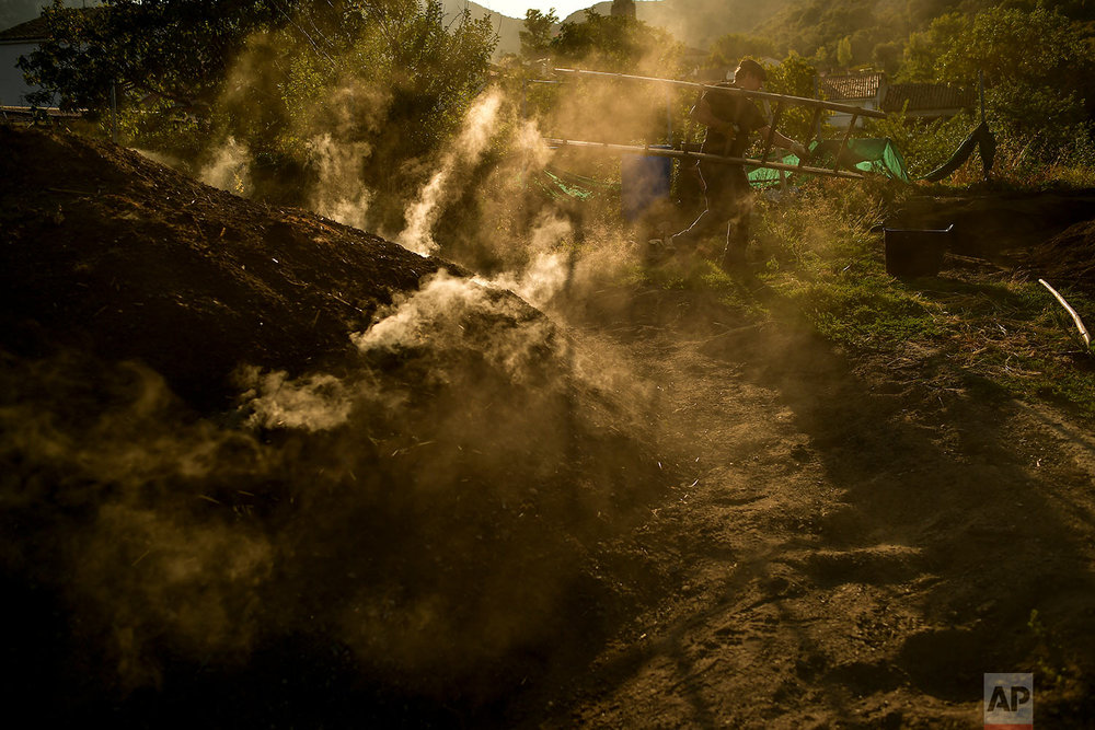 In this Wednesday, Aug. 29, 2018 photo, Miguel Lander, 56, makes fire inside a mountain made with tree trunks, as part of a process to produce traditional charcoal in Viloria, northern Spain. (AP Photo/Alvaro Barrientos)