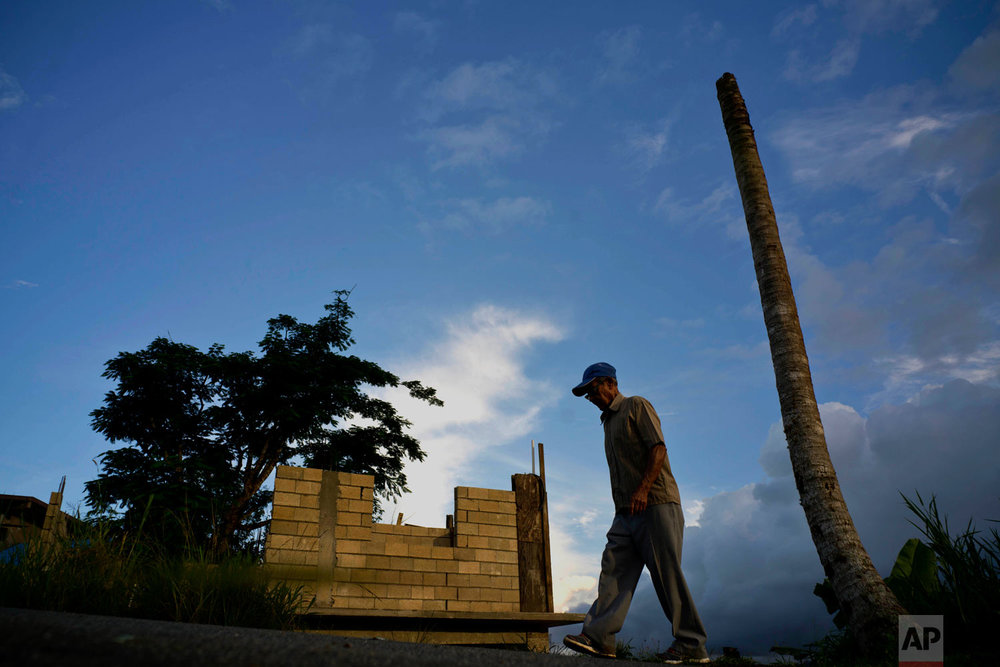In this Sept. 8, 2018 photo, Ramon Alicea Burgos walks past his palm tree, with its top broken off by Hurricane Maria one year ago, outside his partially rebuilt home in the mountain town of Barranquitas, Puerto Rico.  (AP Photo/Ramon Espinosa)
