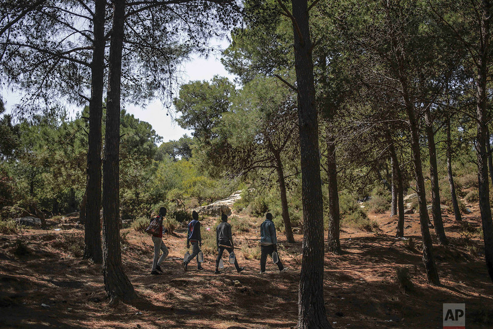 Sub-Saharan migrants fetch for water as they take shelter in a forest near Masnana, Sept. 5, 2018, on the outskirts of Tangier, Morocco. (AP Photo/Mosa'ab Elshamy)