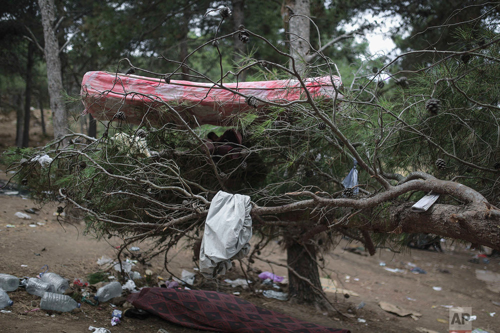 A sleeping mattress is seen on a tree in a forest where sub-Saharan migrants aiming to cross to Europe have taken shelter in, near Masnana, Sept. 8, 2018, on the outskirts of Tangier, Morocco. (AP Photo/Mosa'ab Elshamy)