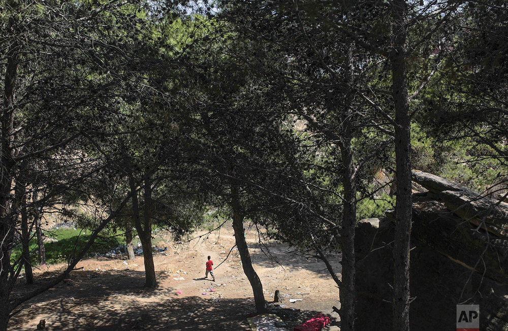 A sub-Saharan migrant aiming to cross to Europe takes shelter in a forest near Masnana, Sept. 5, 2018, on the outskirts of Tangier, Morocco. (AP Photo/Mosa'ab Elshamy)